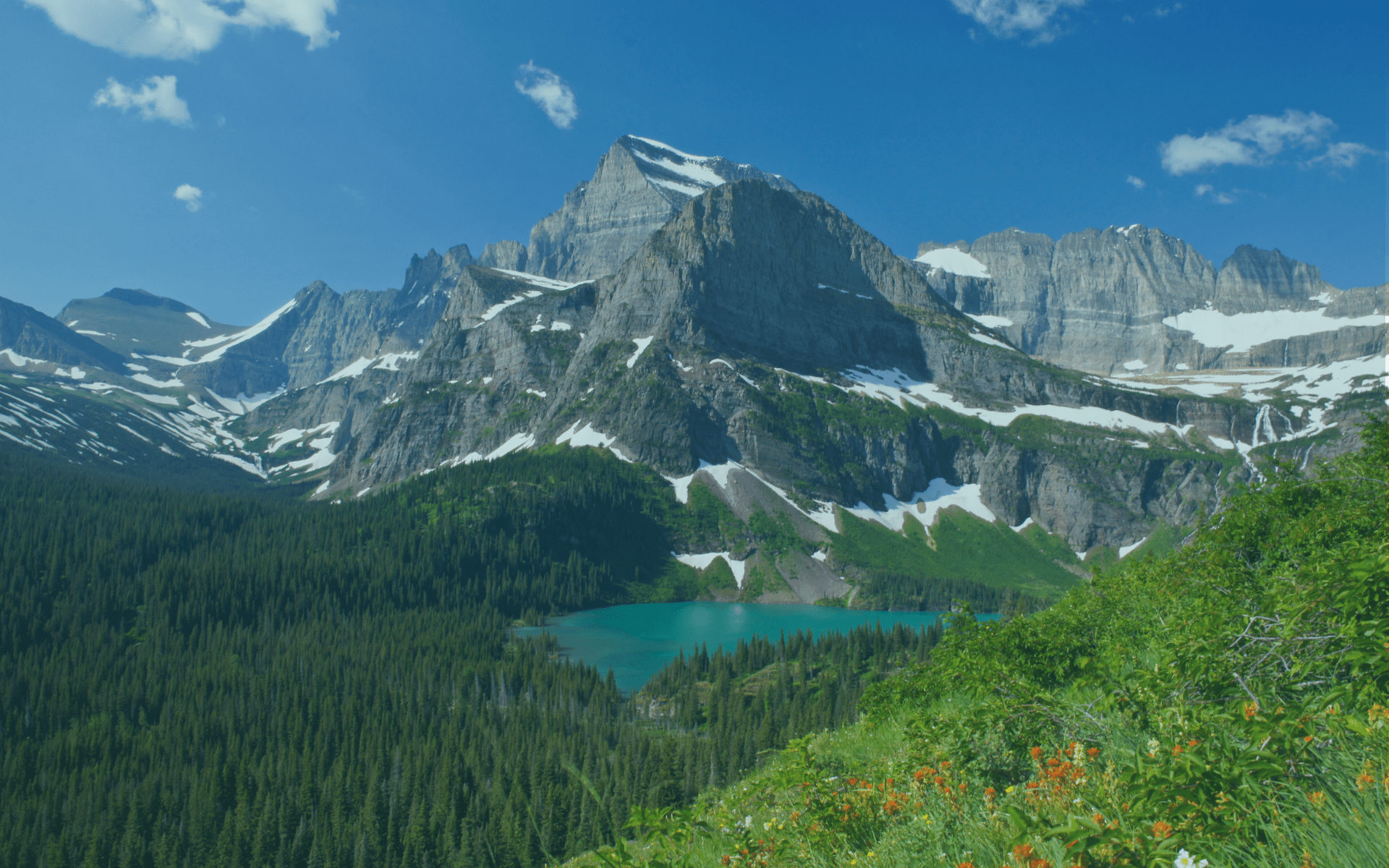 LC Staffing Awarded Glacier National Park Contract