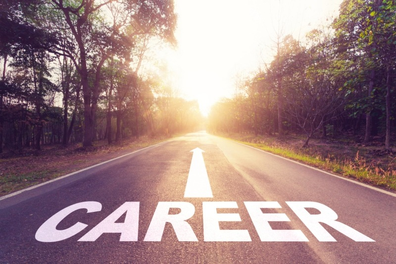 Career Path Development